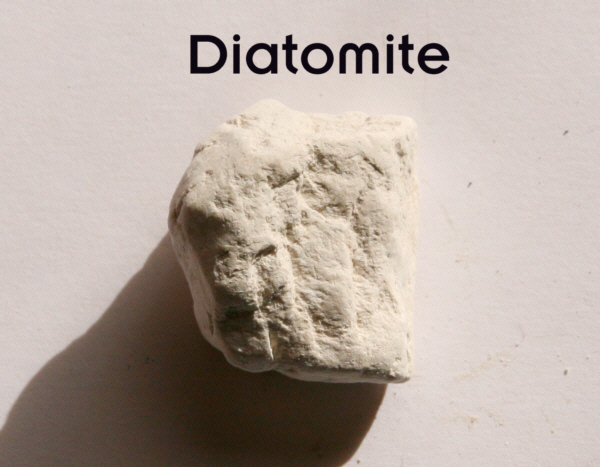 http://www.mine-engineer.com/mining/mineral/Diatomite-small.jpg